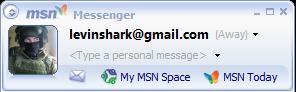 MSN profile screenshot